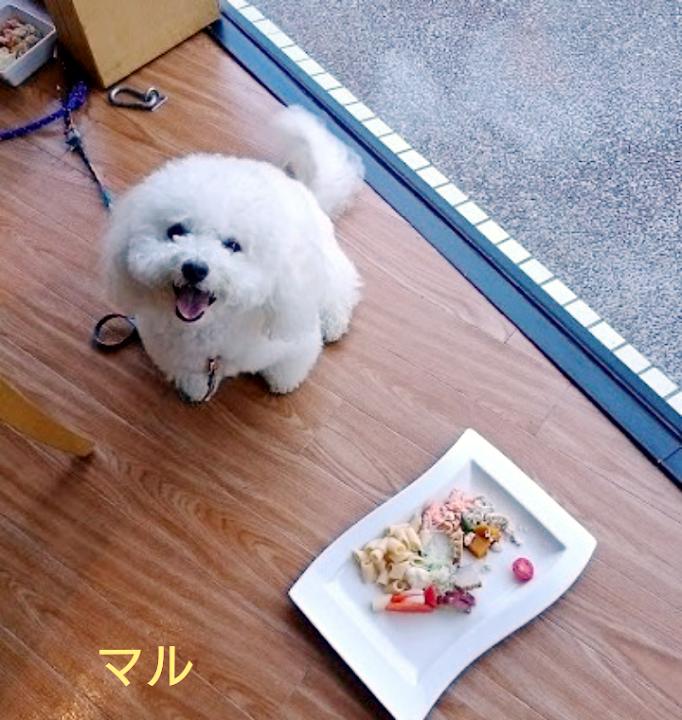 2017秋オフ会マル朝食